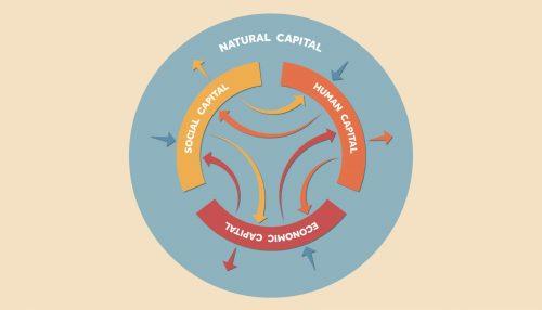 Quanto vale il capitale naturale?