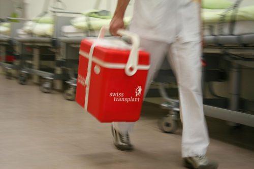Donazione degli organi quasi in porto, anche se…