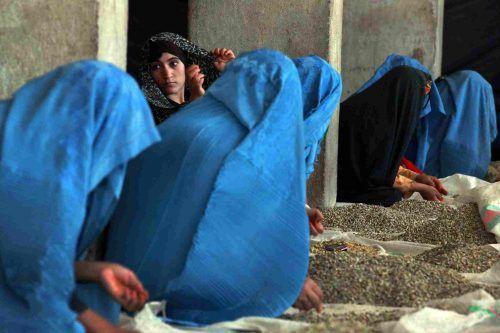 Collasso Afghanistan, tragica resa dei conti