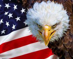 L'America e i suoi vassalli